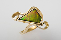 ammolite collection